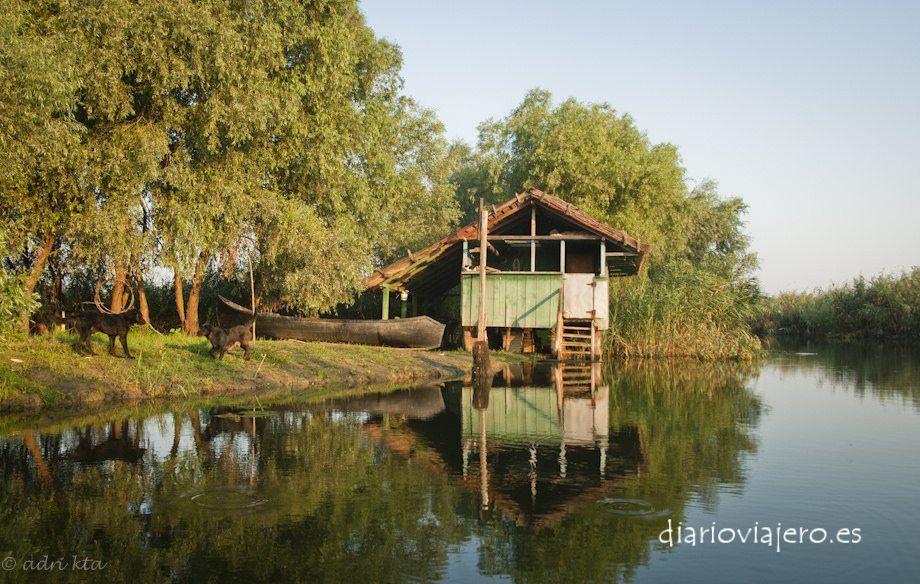 delta-danubio-rumania