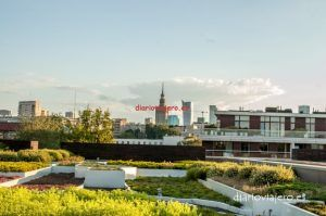 Jardines de la libreria de la Universidad de Varsovia 15 de 17 - diarioviajero.es