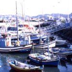 Zonas a evitar en Lisboa