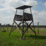 Auschwitz en 38 imágenes