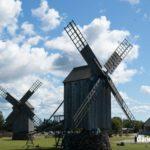 Los molinos de Angla de la isla de Saarema en imágenes