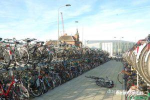 Visita a Delft. Que ver en Delft. Como llegar a Delft desde Amsterdam