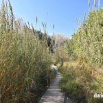 La ruta de los molinos de Alborache en imágenes
